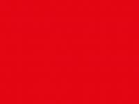 RAL 3002 (красный)