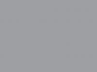 RAL-7004 серый