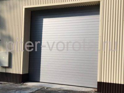 Промышленные подъёмно-секционные ворота Alutech Protrend в Приветнинском, фото 1